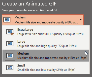 Choose an Export Size for the Animated GIF